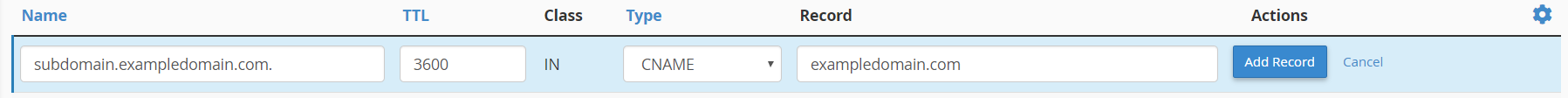 Add DNS CNAME record within cPanel Zone Editor module