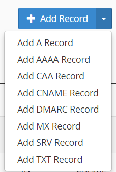 Add selected DNS record type within cPanel's Zone Editor module
