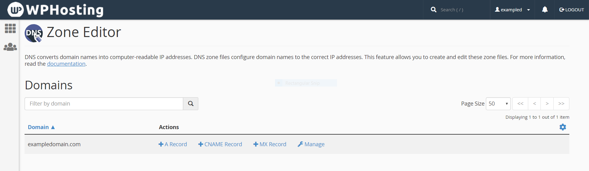 Update DNS records for individual domains within cPanel's Zone Editor module